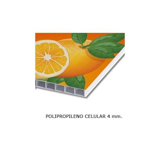 Polipropileno Celular 4mm